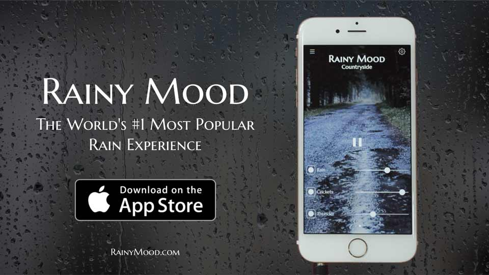 Rainy Mood - Helps you to focus, relax, and sleep  Now